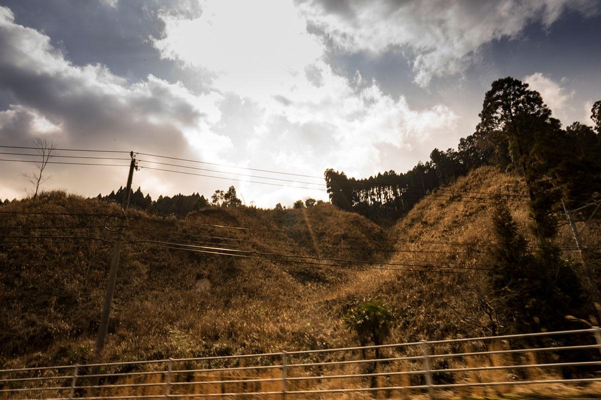 英彦山麓の伐採跡地