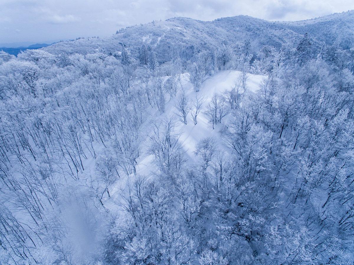 丸子頭山頂の樹氷群