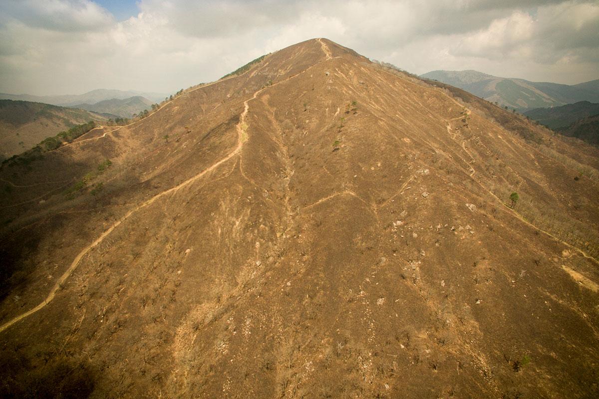 山焼きか後の深入山
