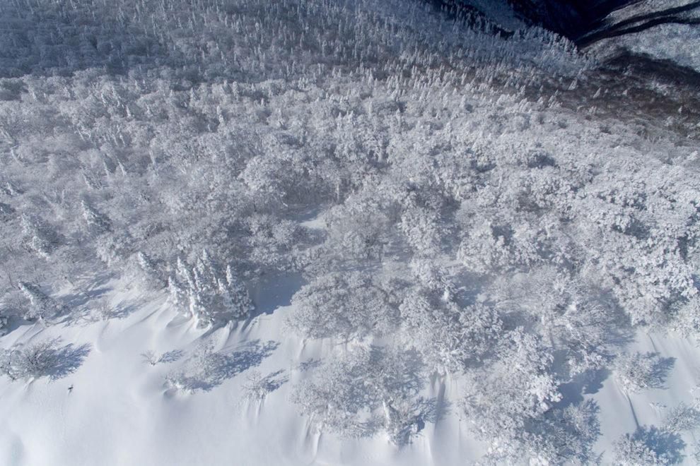 恐羅漢山頂の樹氷を空撮