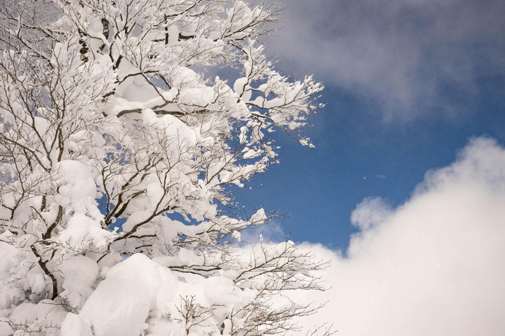 豪雪の邑南 瑞穂ハイランド