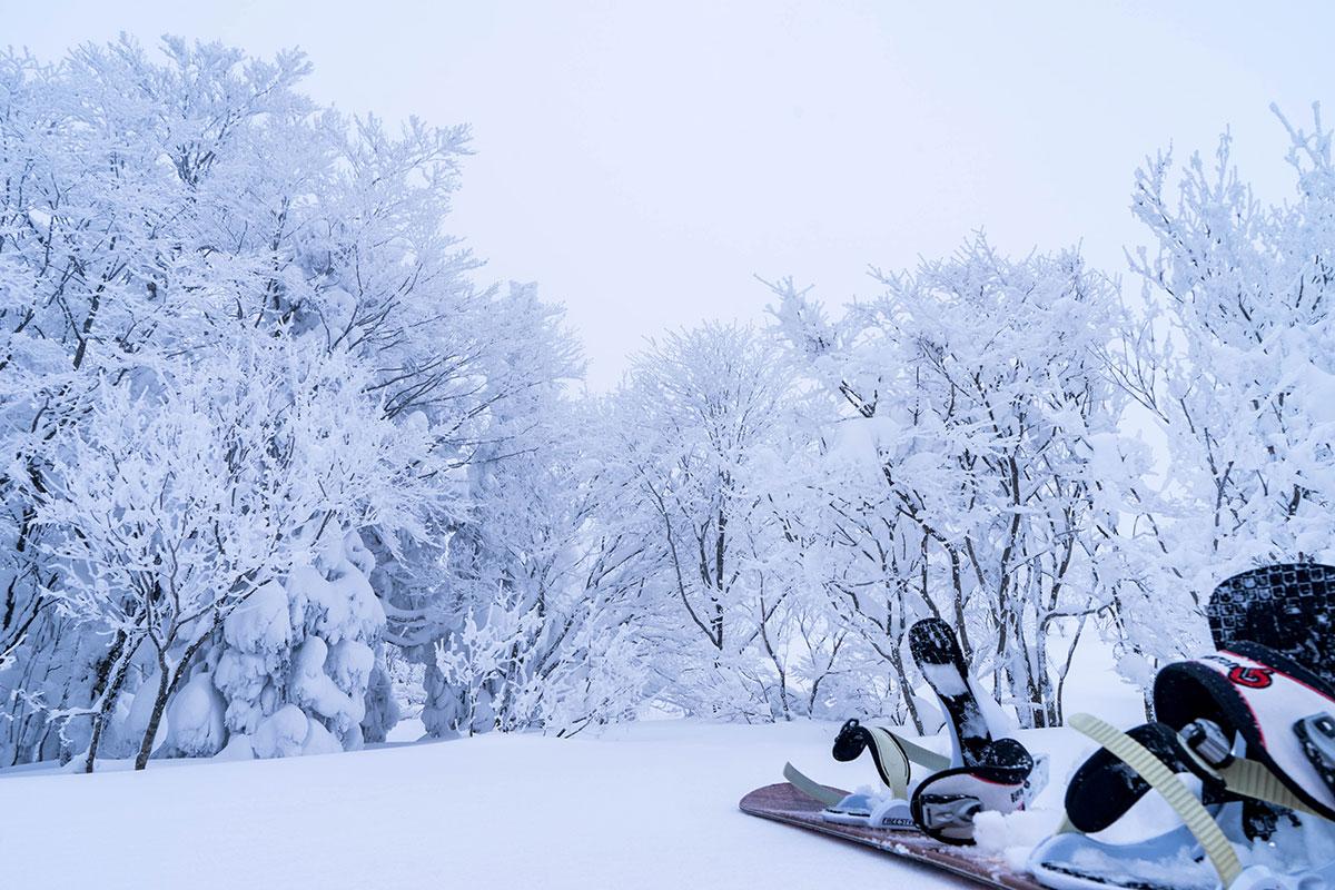 2m超えの豪雪。1m近くが新雪
