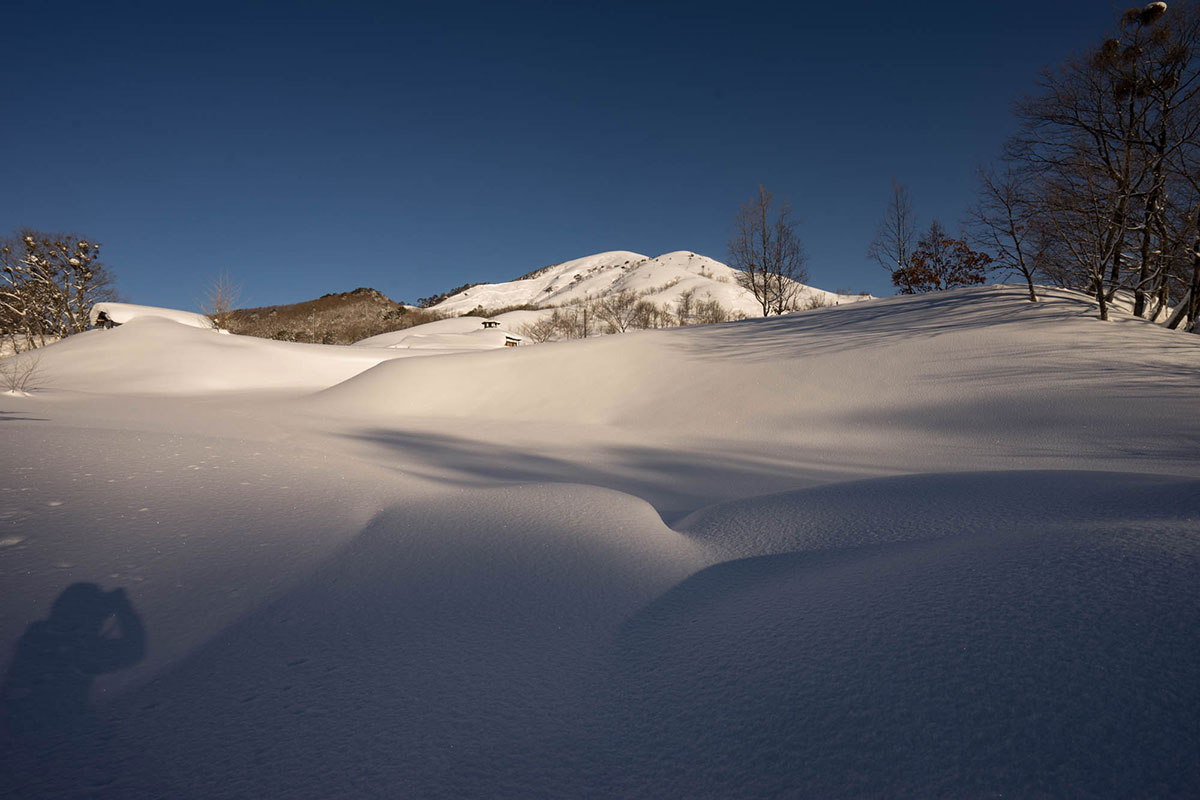 孤高の禿山 深入山