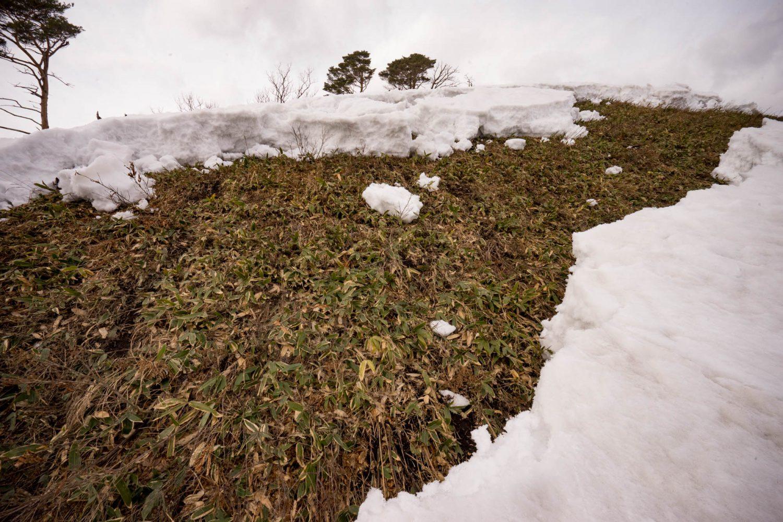 地割れのような雪面。