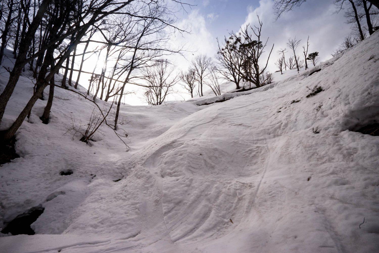 登山道と合流