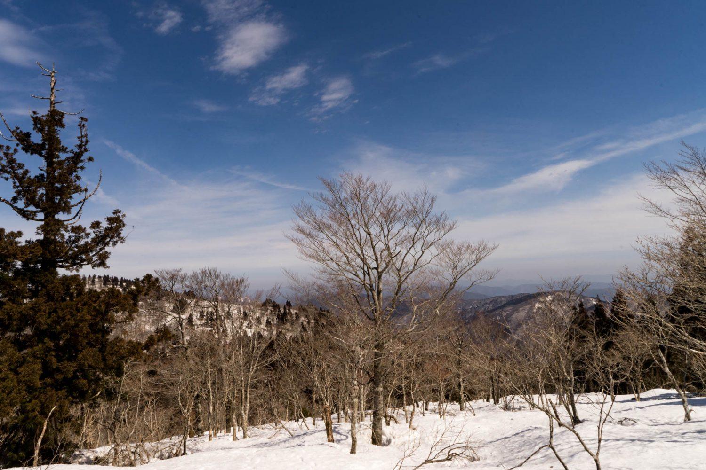旧羅漢山の山頂斜面