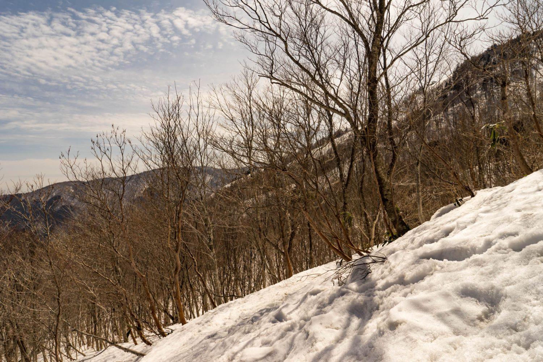 夏焼峠方面に下る斜面