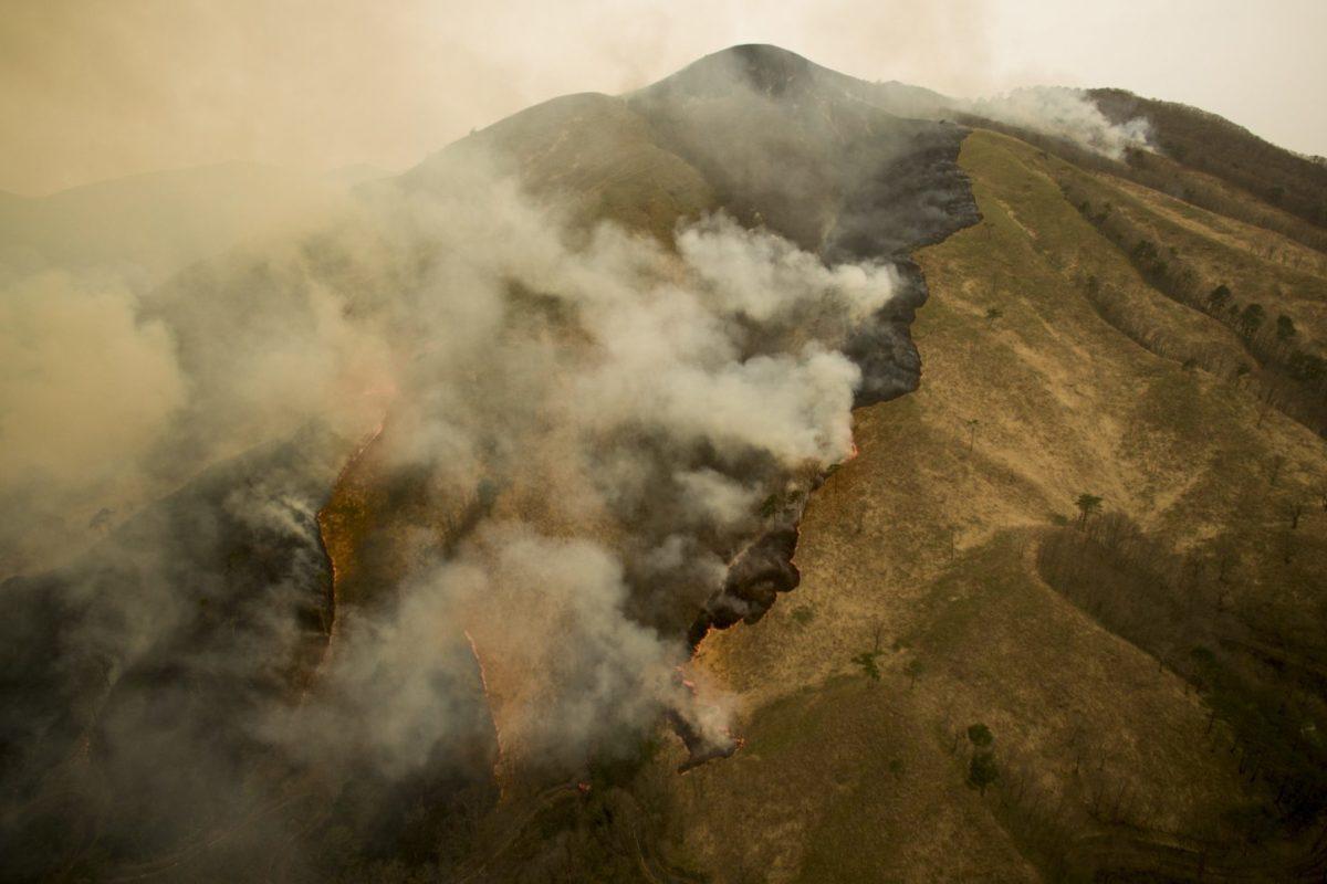 共生?それとも自然破壊?深入山に見る山焼きについて