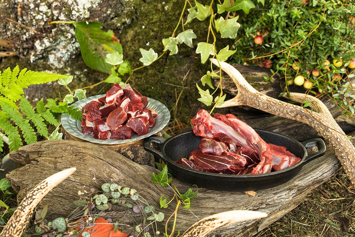 ペットさん定期便の鹿肉・猪肉の評価まとめ。
