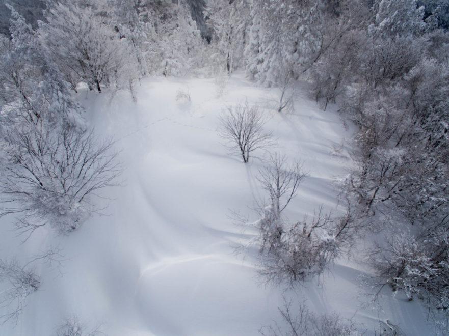 安芸太田町の丸子頭 山頂
