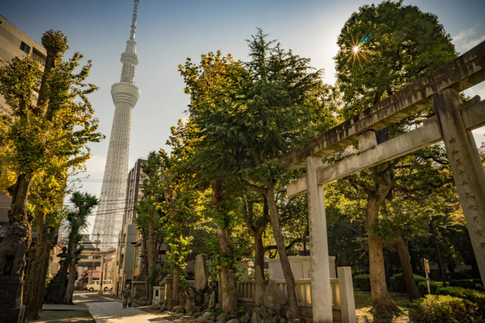 東京スカイツリーと牛島神社 墨田区