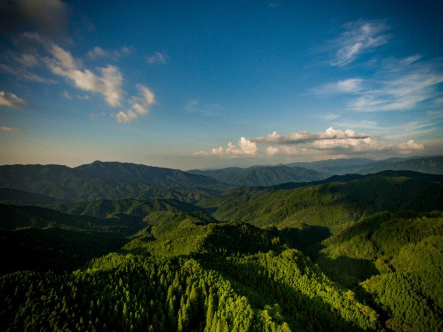 鳥取県頭部の林業地帯